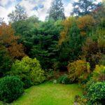 Villa con parco Moncalieri giardino
